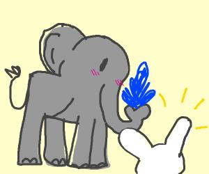 Elephant befriends white rabbit