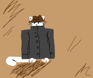 Cat in a large coat
