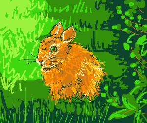 happy bunny sitting in a meadow