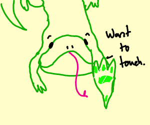 lizard wants to touch