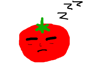 sleeping tomato