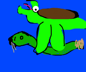 Turtle rides his Snake friend