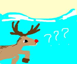 Angry reindeer in an ocean.