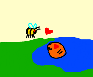 bee and fish in the water