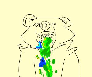 Bear pukes