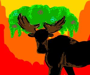 A tree moose