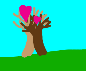 2 trees are kissing and loving each other.