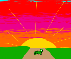 a turtle rolling towards the sunset