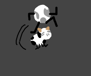Moon jumps over the cow