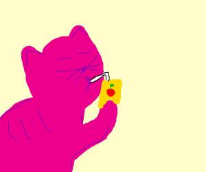 Pink Cat drinking juice
