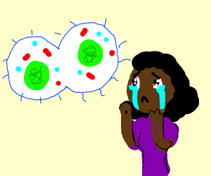 girl is crying over mitosis