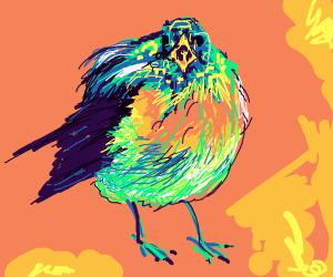 bird in california