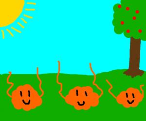 happy wavy blobs in a field