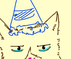 grumpy cat in a party hat