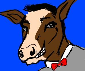 Cow Home Videos