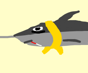 sick swordfish with a scarf
