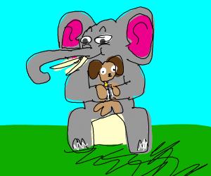 Elephant takes care of dog