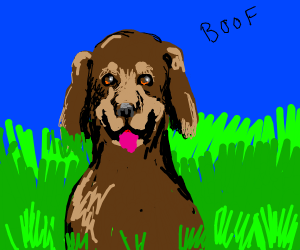 Dog says boof