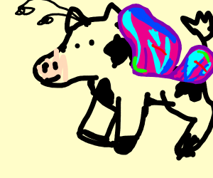 Cow Butterfly
