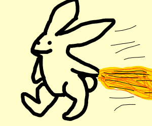 Rabbit jogging with Spaghetti