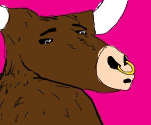 Seductive bull
