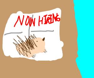 Hedgehog For Hire