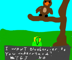 anoying owl from zelda oot wants blueberries
