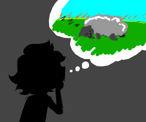 Person silhouette think sleeping sheep
