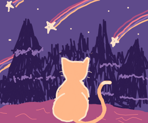 Adorable cat is amazed by some shooting stars