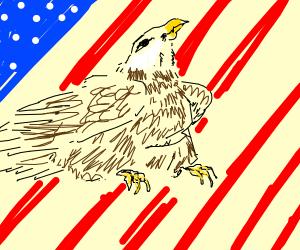 Fat Eagle representing America