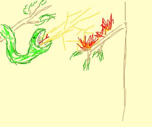 Shrek throwing up lightning