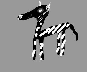 strange zebra