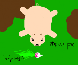 pig scared of a turnip