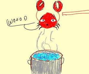 Dumb crab