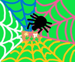 psychedelic spider web garden