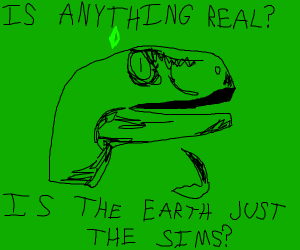 Is anything real? Is the Earth just The Sims?