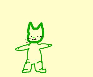 green cat posing