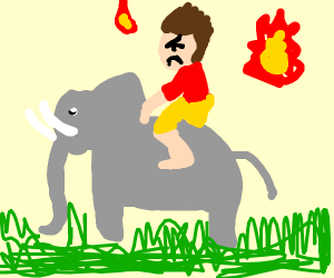 angry man riding an elephant