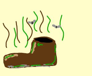 A stinky shoe