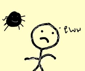 I just walked thru a spider web.  Ewww!