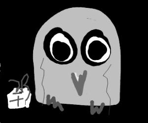 Inquisitive Owl