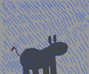 baby rhino in a storm
