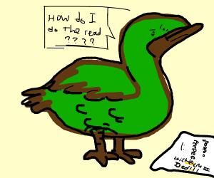 an illiterate duck