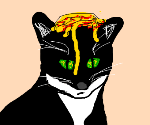 A coy cat with spaghetti on its head