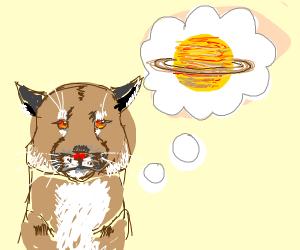 Puma imagining Saturn