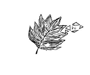 """leaf saying """"hi"""""""