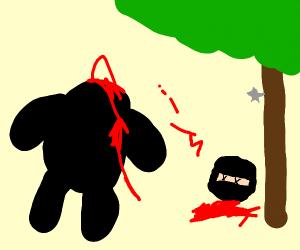 Ninja that got decapitated