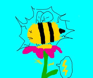 Bee getting electrocuted