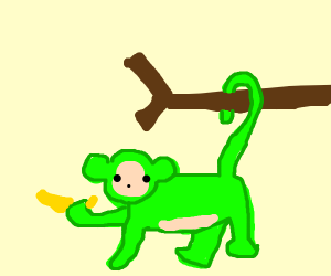 Green Monkey Thing hanging on a branch