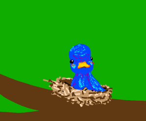 Blue Duck in a Nest